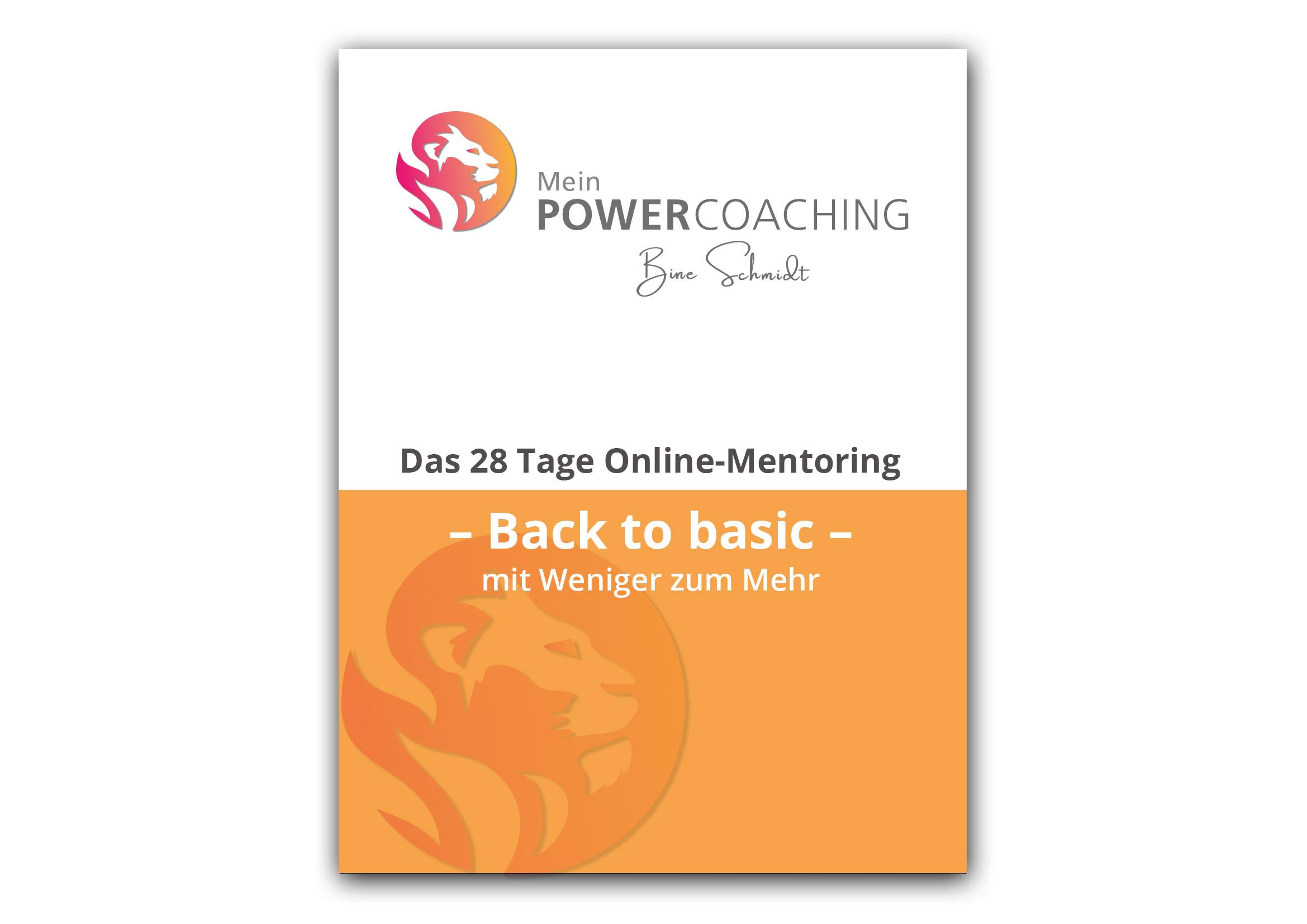 Bine Schmidt Power Coaching